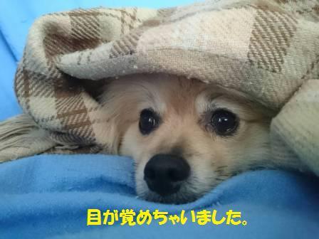 20160714_3.jpg