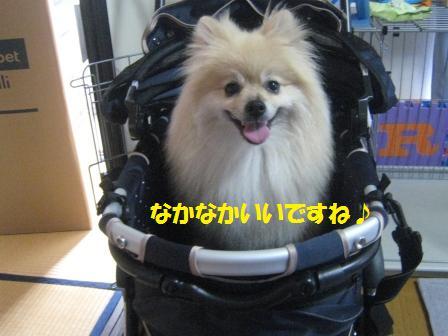 20160715c_13.jpg