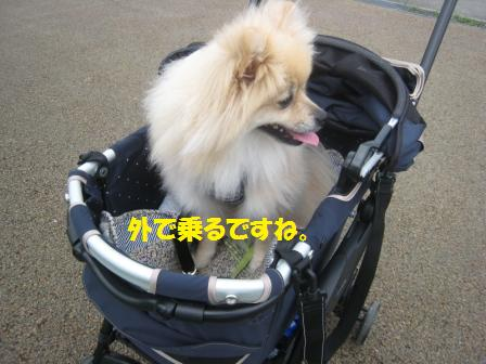 20160718_1.jpg