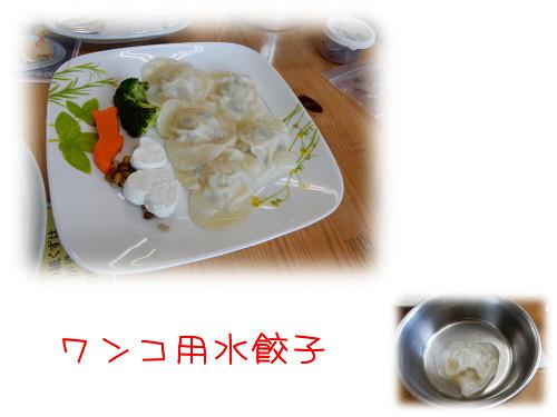 ワンコ餃子