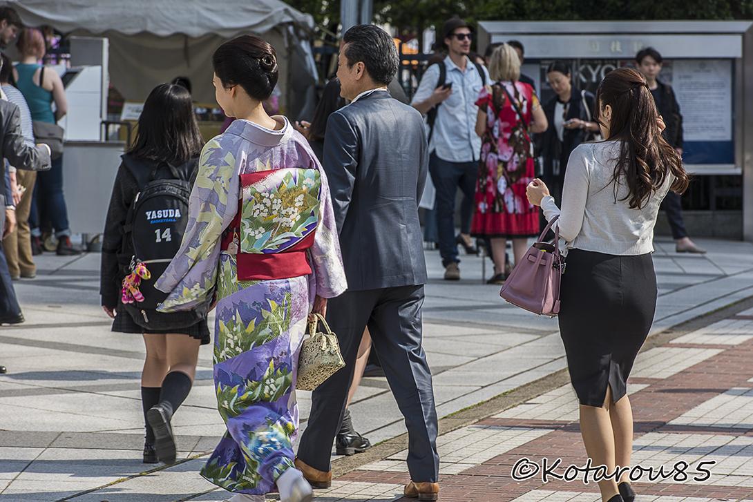 どど~んとお相撲さん7 20160520