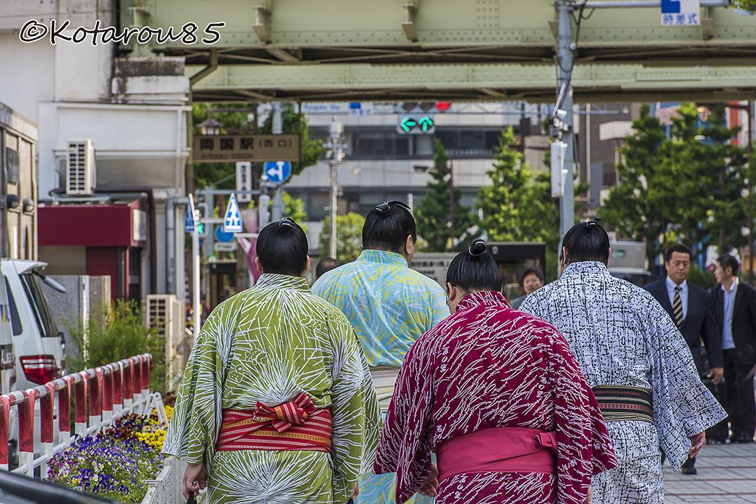 どど~んとお相撲さん8 20160520