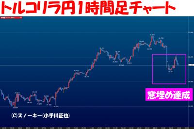 20160718トルコリラ円1時間足
