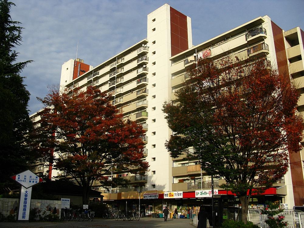 2015_11_21砂田橋:スーパーヤマト (4)