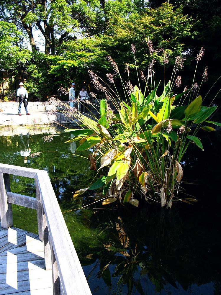 2012_10_20 徳川園- (27)