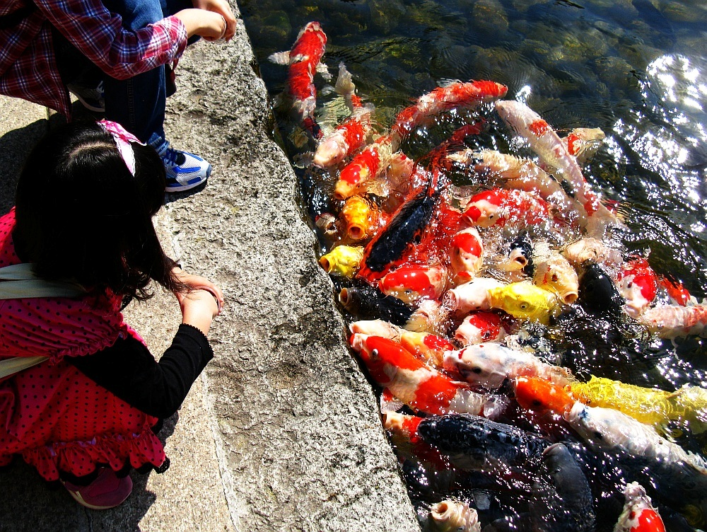 2012_10_20 徳川園- (36)