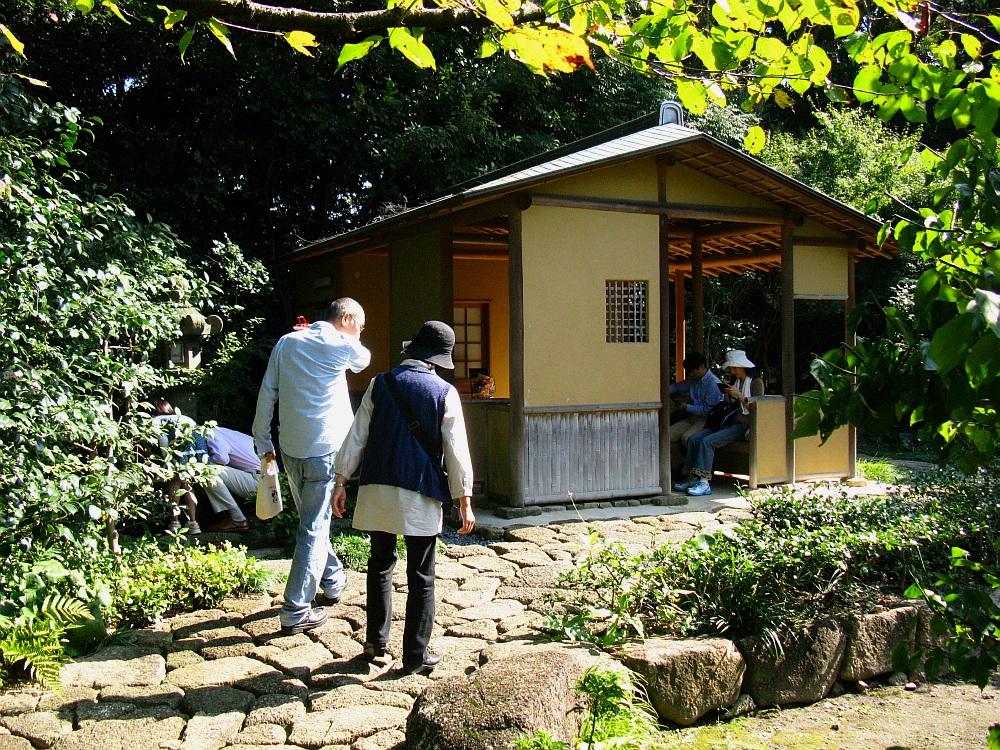 2012_10_20 徳川園- (76)