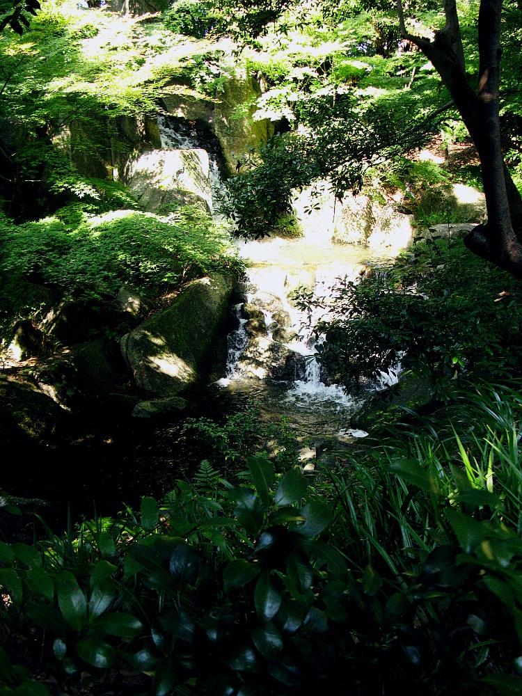 2012_10_20 徳川園- (82)