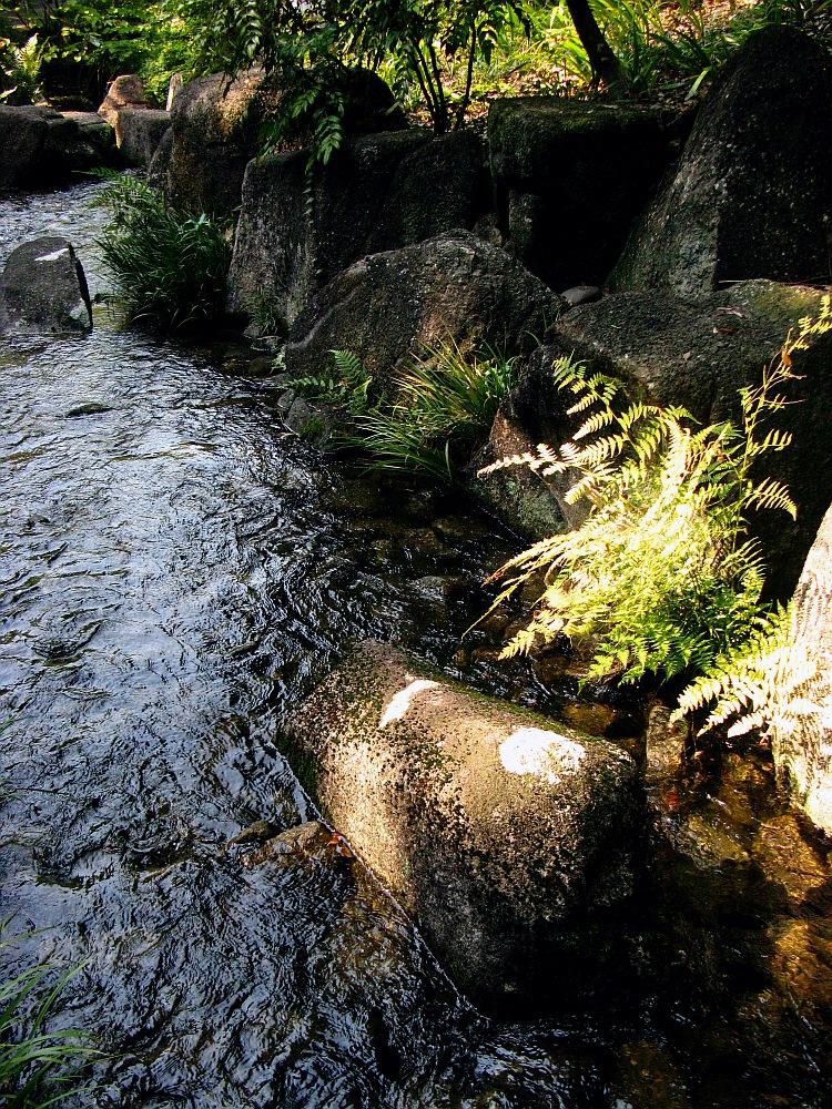 2012_10_20 徳川園- (84)