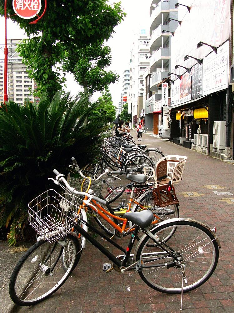 2015_05_30赤塚:徳川ホルモンセンター (3)