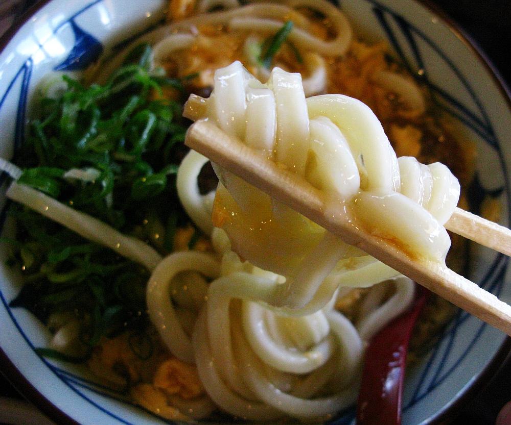 2015_12_29モゾワンダーシティ:丸亀製麺- (38)
