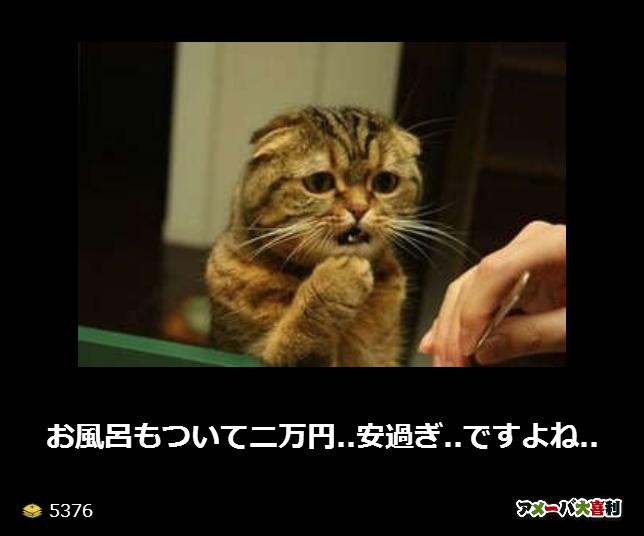 お風呂もついて二万円..安過ぎ..ですよね..