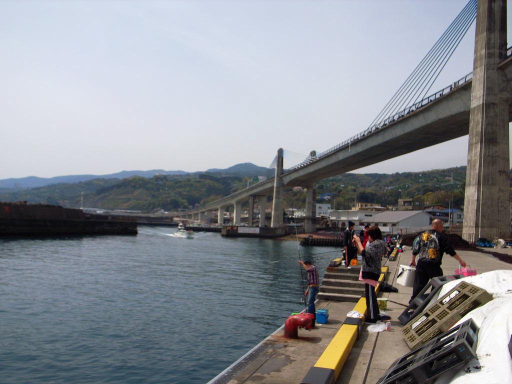 小田原魚市場 (15)