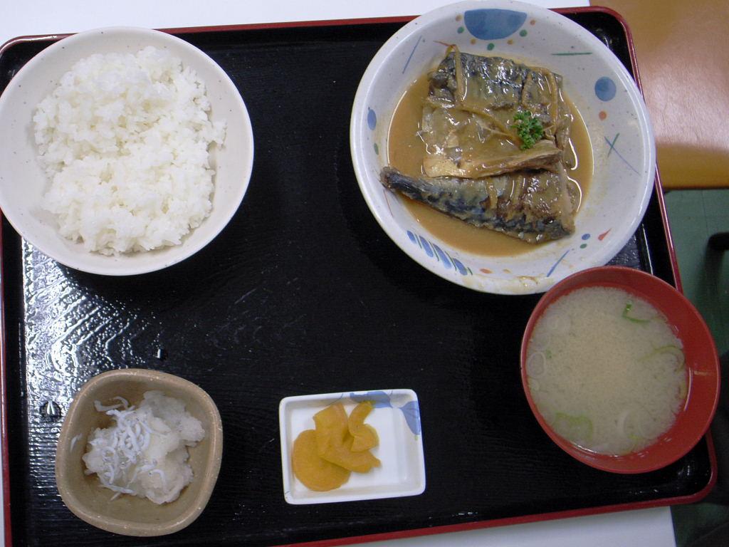 小田原魚市場 (8)