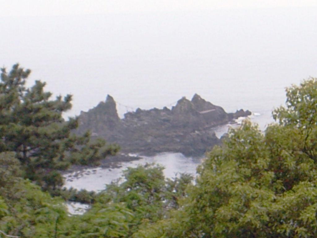 真鶴半島 (25)