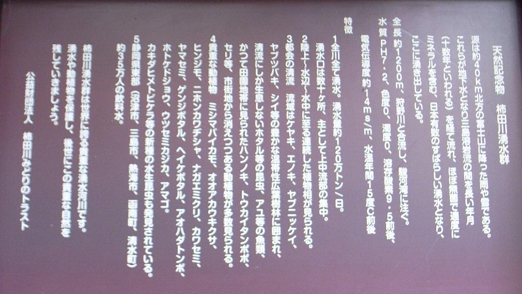 柿田川 (6)