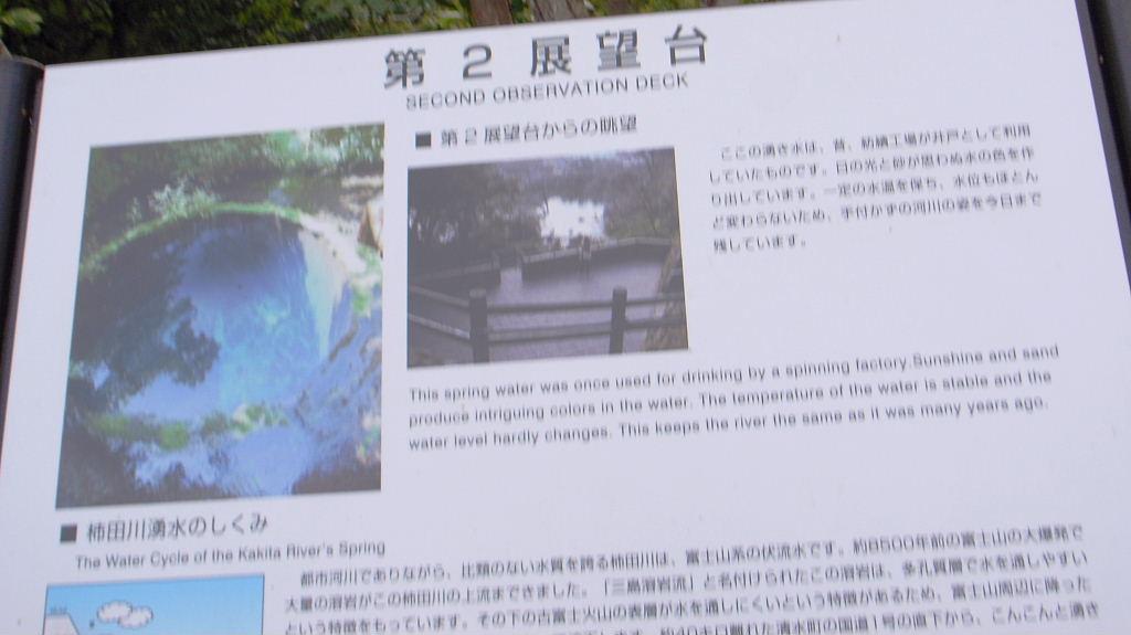 柿田川 (2)