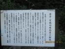 IMG_0295.jpg