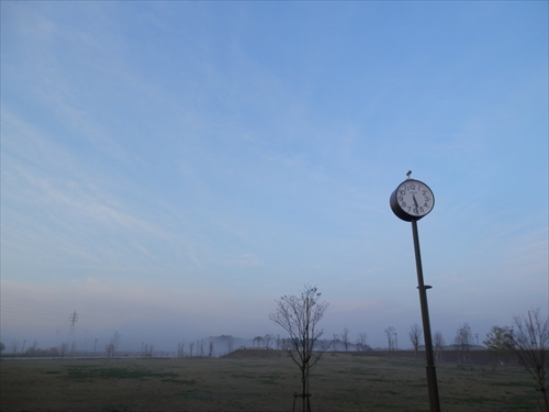 P4060347.jpg