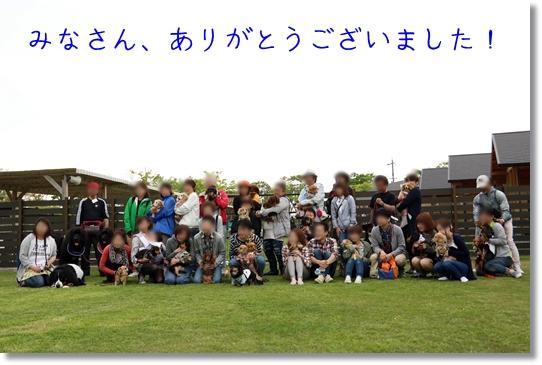 3V9A2429.jpg