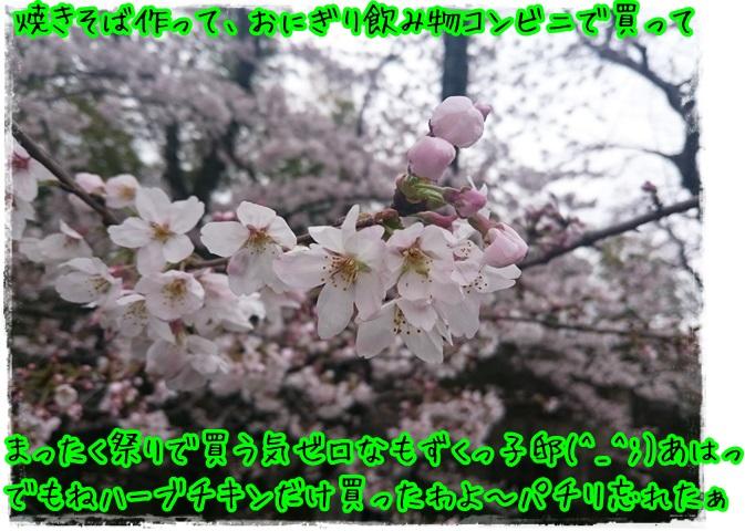 花より団子2016