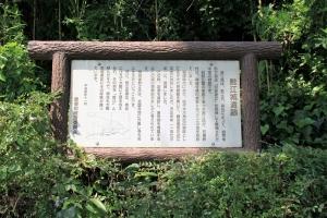 namazue1 (4)