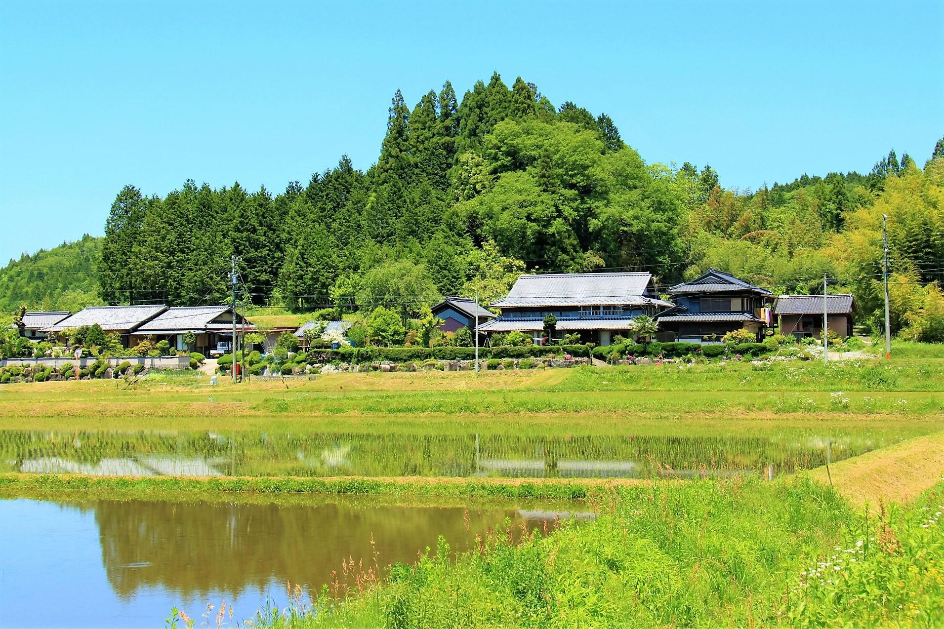 kamaiyakata (2)