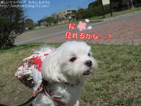 20160406_2.jpg