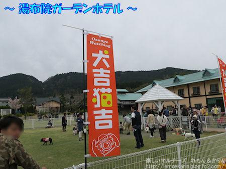 20160424_2.jpg