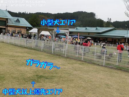 20160425_2.jpg