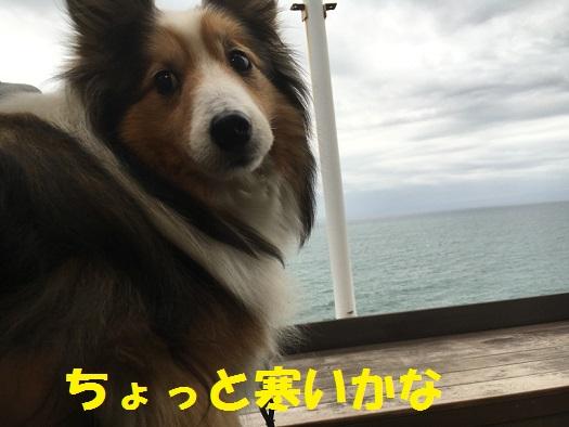 江ノ島99