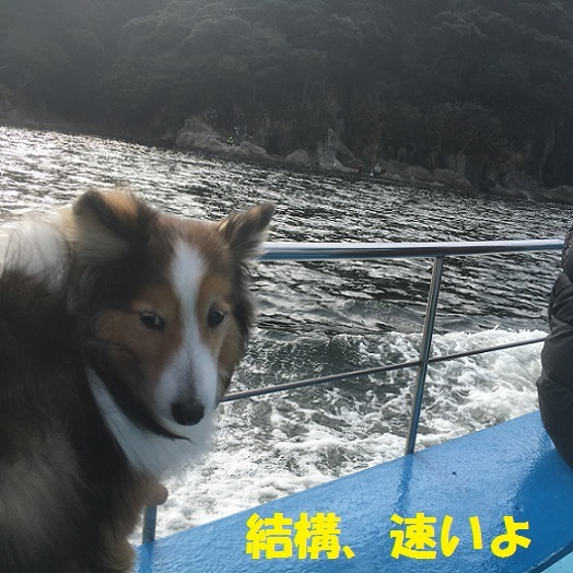 七福神江ノ島