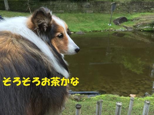 北鎌倉92