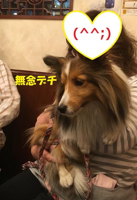 中華991