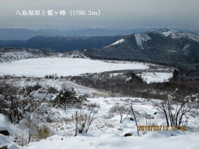 八島湿原と鷲ヶ峰