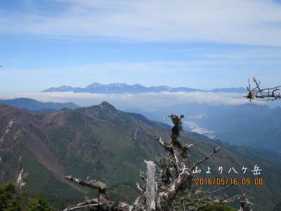 大山山頂から八ケ岳