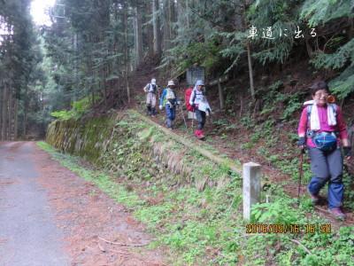 車道に下山(16:50)