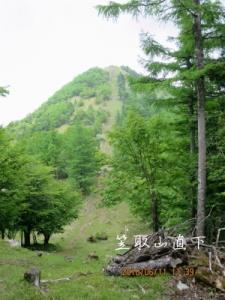 笠取山直下の急坂