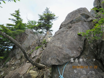 露岩のピーク この針金を潜って岩岳尾根へ