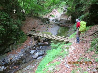 丸木橋を渡る
