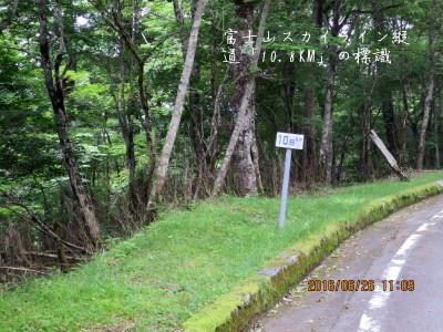 冨士スカイライン縦道「10.8km」の標識を横切る