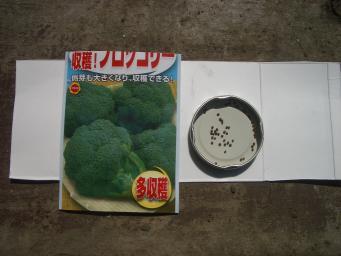 ブロッコリ-の種