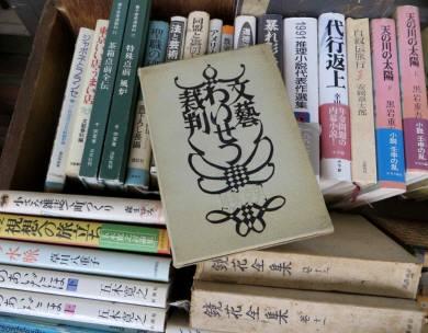 2016_06 04_円山公園、河原町デモ・8