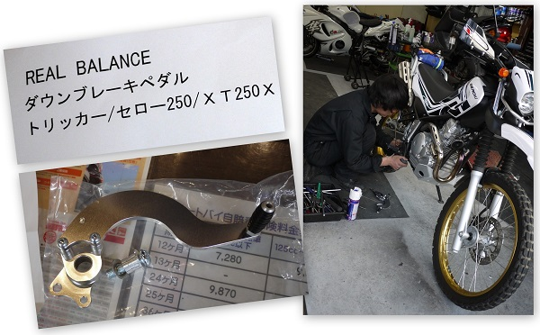 sakurasaku1604-002b.jpg