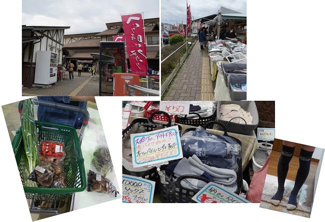 sakurasaku1604-105bx.jpg