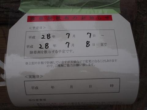 P7081296.jpg