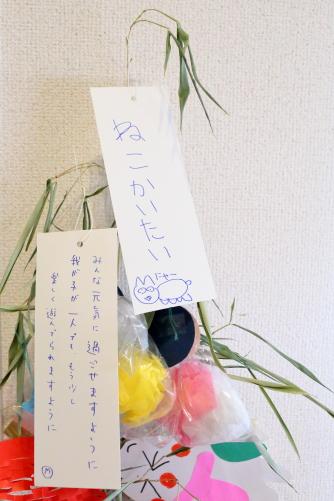 16B_0082.jpg