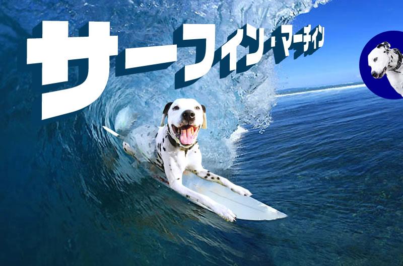 サーフィンマーチン1
