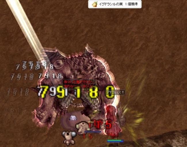 55_image7.jpg