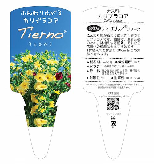 カリブラコア ティエルノ オリジナル品種 育種 生産 販売 松原園芸